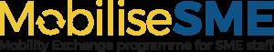 MobiliseSME programme